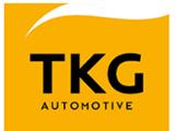 TKG Otomotiv
